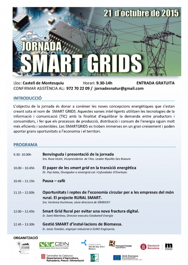 Programa SmartGrids_21-10-2015_DEF